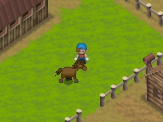 Harvest Moon 64 (USA) In game screenshot