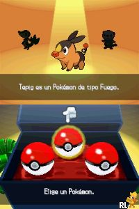 Pokemon - Edicion Blanca (DSi Enhanced) (S) Screen Shot